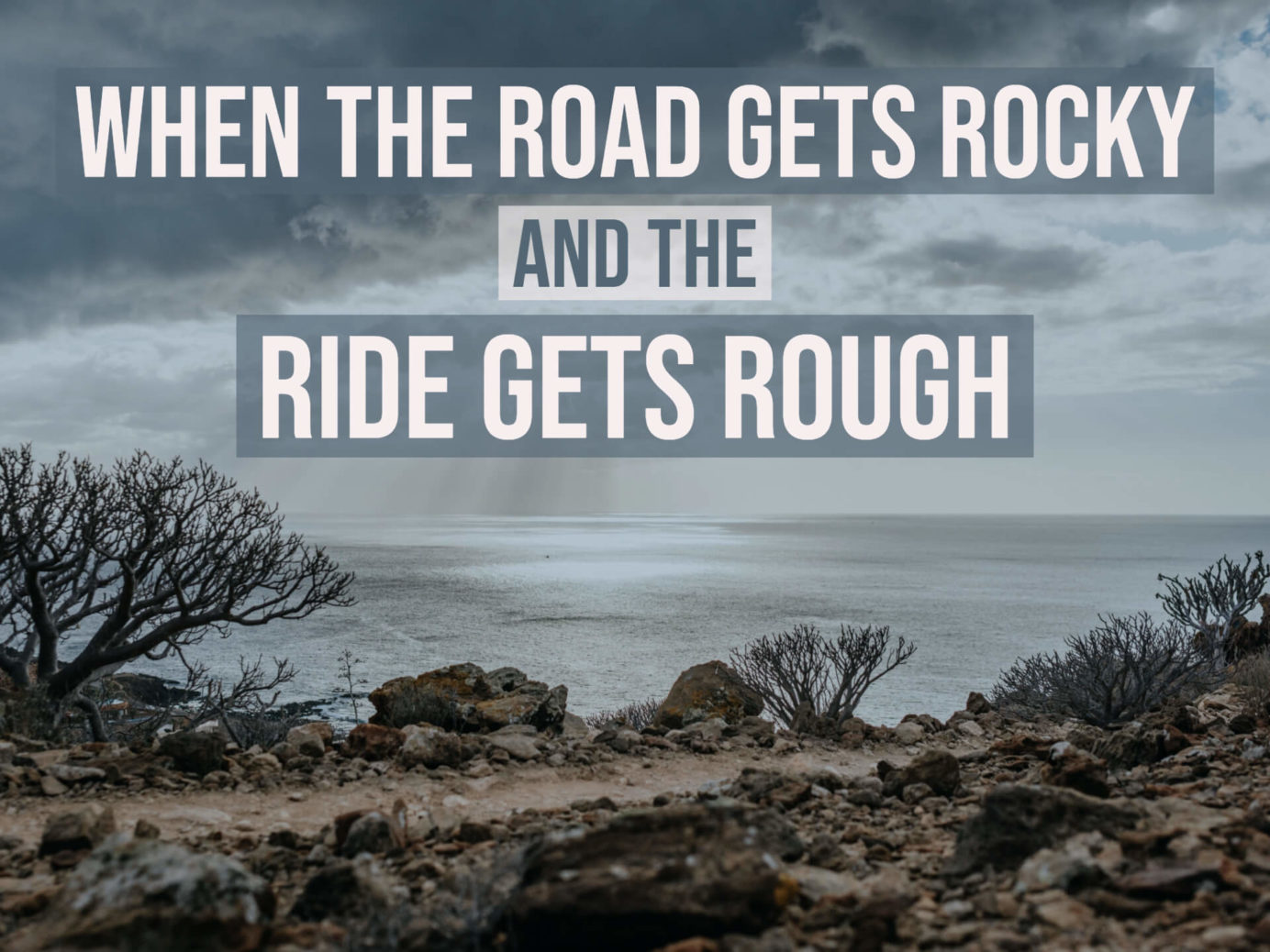 Edy Cozort - When The Road Gets Rocky and the Ride Gets Rough